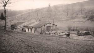 Das alte Sägewerk in den 50er Jahren