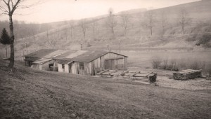 The old saw mill in the 1950s